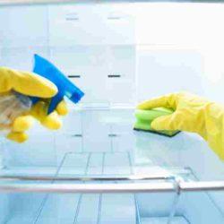 Cómo Limpiar un Frigorífico - Limpiar un Frigorífico - Consejos Limpiar un Frigorífico