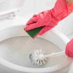 Limpiar el Inodoro - Como Limpiar el Inodoro - Limpiar Inodoro