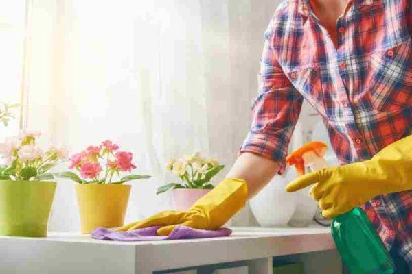 Servicios de Limpieza Generales - Limpiezas Generales Profesionales
