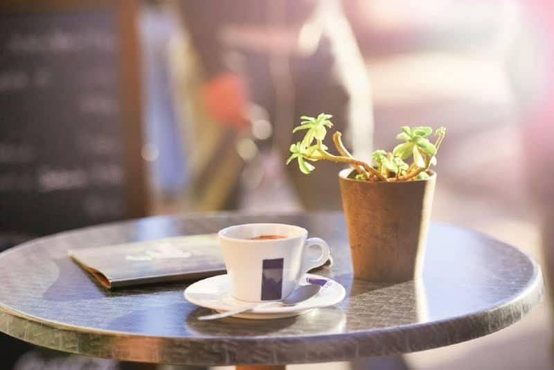 Mesa de centro redonda de metal con planta y taza de té