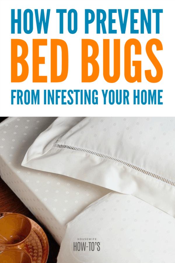Cómo prevenir las chinches: pasos sencillos para mantener estas plagas fuera de su hogar para una buena #chinches #plagas #limpieza de dormitorios # limpieza