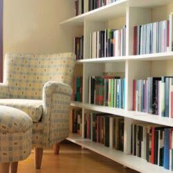 Limpiar Estanterías y Libros