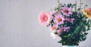 Cómo Mantener las Flores Frescas