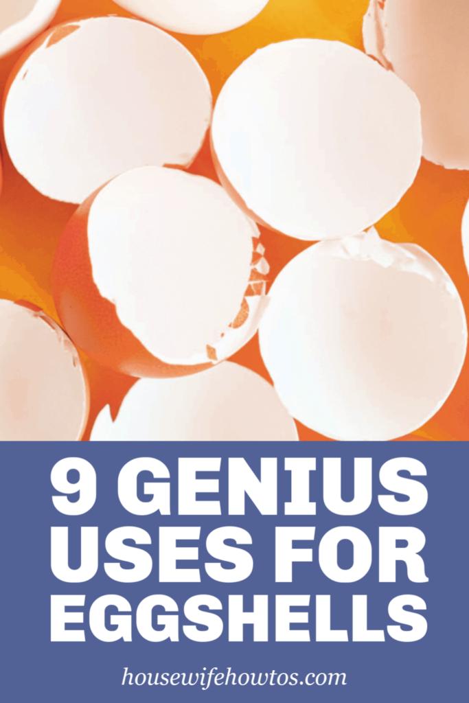 9 usos geniales de las cáscaras de huevo
