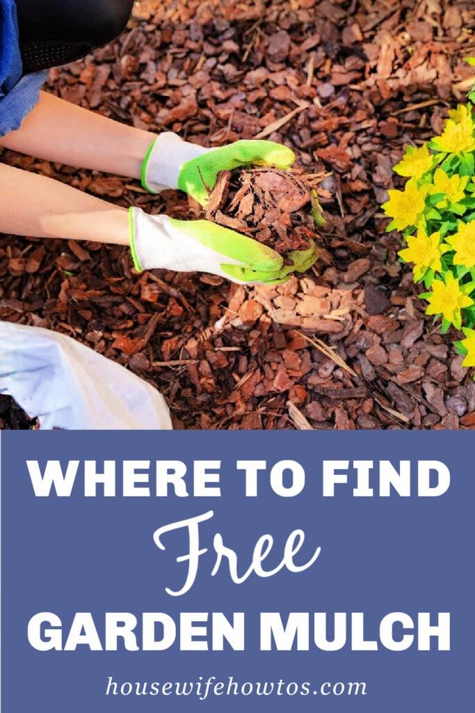 Dónde encontrar mantillo de jardín gratuito